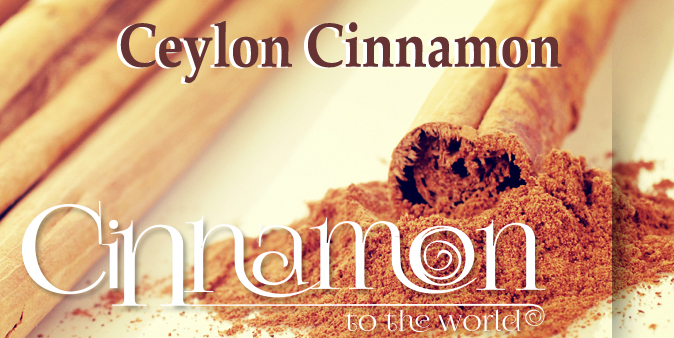 CeylonCinnamon_copy